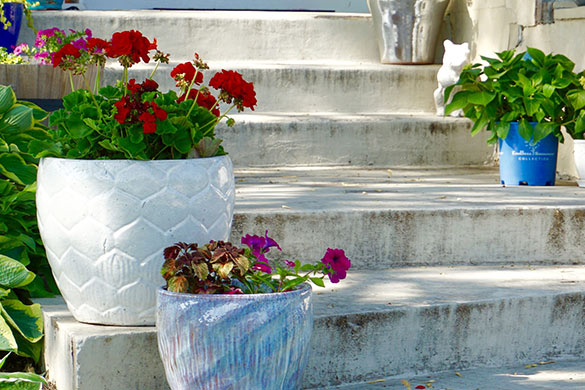 Container gardening in space with limited size and minimal sun