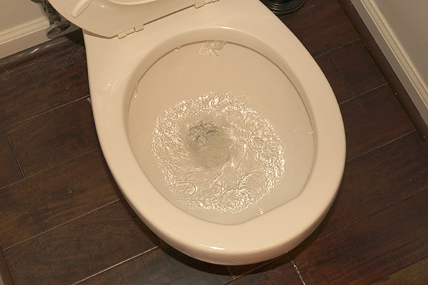 cleared toilet drain after using a plunger