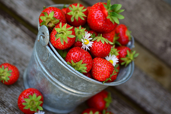 Summer garden diy tips and ideas for strawberries
