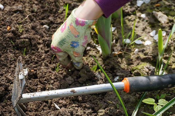 Summer gardening diy tips and ideas for working in the garden